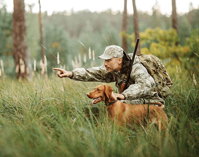 Lov na slikama i videu - Page 8 Hunter-dog
